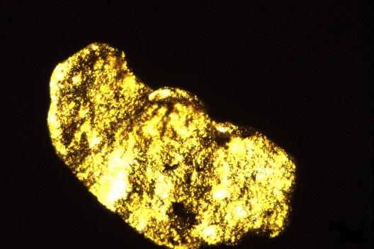 gli esperti ci spiegano il prezzo e la quotazione oro